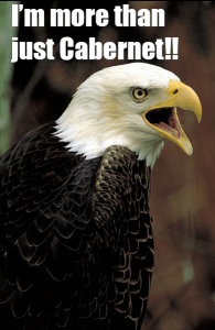 eagle screaming about being more than Cabernet