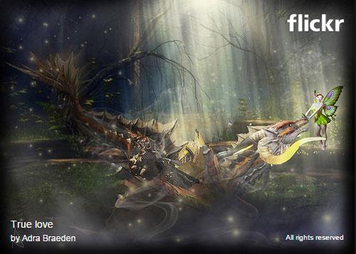 Flickr Embed w/Fancy Header & Footer Disabled