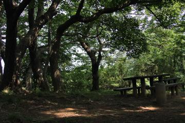 Hitorizawa_civic_41