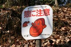Nanasawa_09