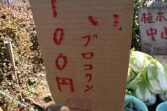 Nanasawa_10