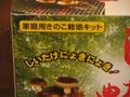 shiitake_003