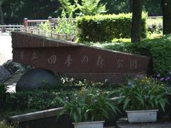 Shikinomori_003