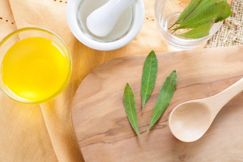 tea tree oil leaves