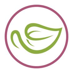 Our sister brand, Yum Matcha