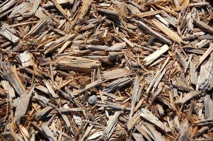 Kan een mulchlaag onkruid tegen houden?