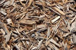 Helpt een mulchlaag tegen onkruid?