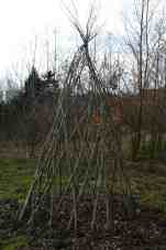 tuin maart 2004 008