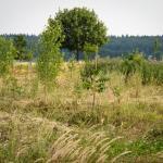 Een Primeur voor het PermacultuurNetwerk