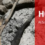 Het Op Eén Na Beste Gelezen Blogbericht van 2015!