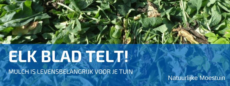 We Starten onze Top 10 met Compost, Mulchen en Afdekken