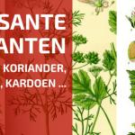 Interessante Planten Voor de Tuin