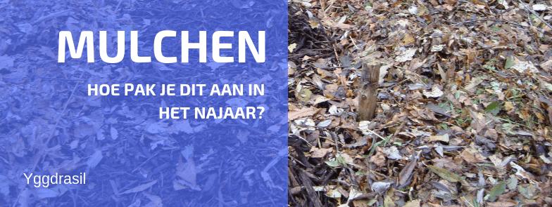 Mulchen in het Najaar: Geen Sinecure!