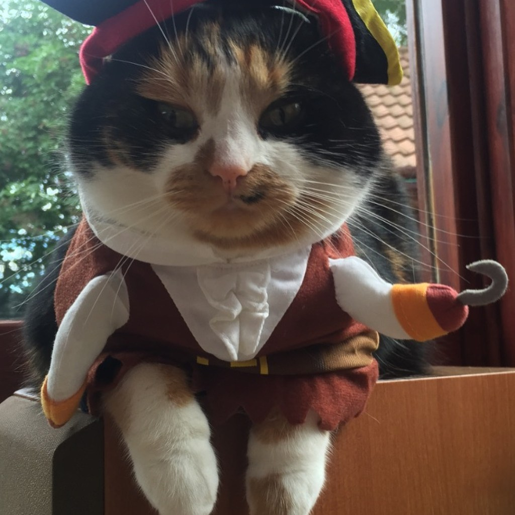 Chat_Pirate