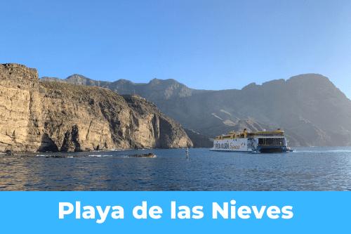Les Canaries : Playa de las Nieves