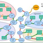 pythonの機械学習ライブラリ『scikit-learn』