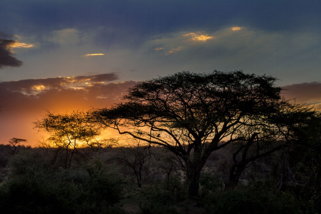 Sunset in Samburuland, Northern Kenya | Photo by Nelson Guda © 2019