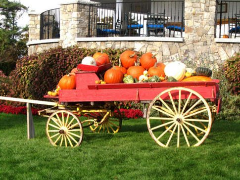 Wentworth by the sea hotal and spa has many colorful fall harvest displays on the grounds