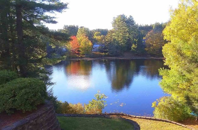 beautiful photo of a backyard lake with fall foliage