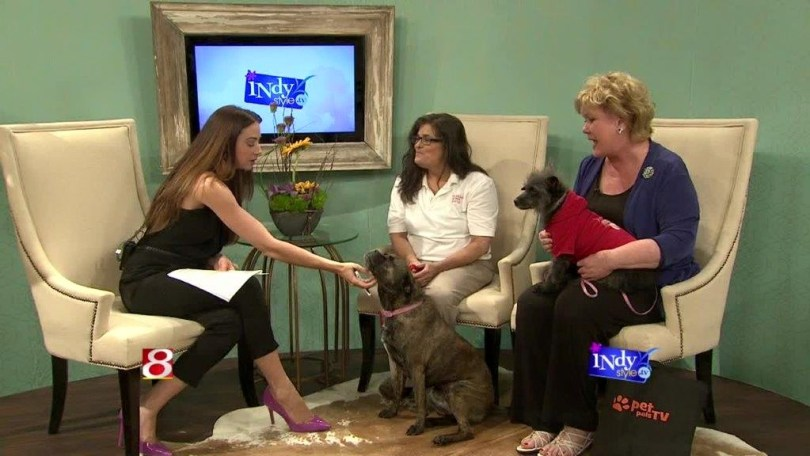 Joanie (center) spreading the word about her rescues in hopes of finding them forever homes.