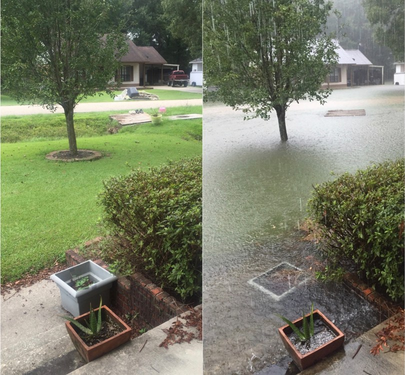Lindsey's front yard before and during the flooding.