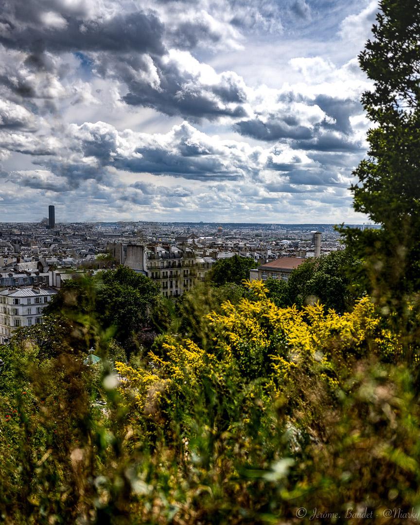 Matin sur la ville - Profiter des matins, entre fleures et villes. Bonjour à vous et bonne journée surtout.----------Enjoy the mornings, between flowers and cities. Good morning to you and good day above all..With lens: NIKKOR Z 35mm f/1.8 S at 35 mmExposure: ¹⁄₄₀₀₀ s à ƒ / 2,2Camera: 35 mm - NIKON Z 7.... #4twitter #montmartre #Paris #paris18 #Street #streetphoto - from Instagram
