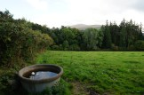 View from Muckross House farms