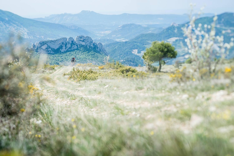 paysage-dromeprovencale-cheminsdusoleil-cyrilcrespeau