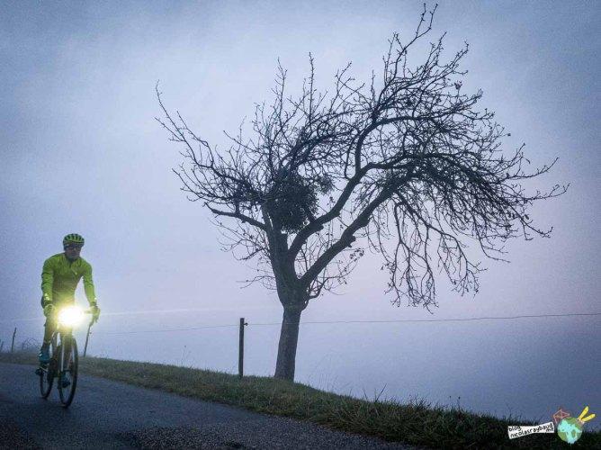 vélo éclairage dans brouillard