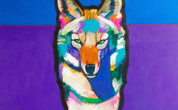 The Portrayal of the Coyote in American Art and Culture