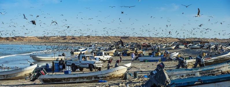 Oman-11-2014-Gasser-(17)web