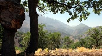 Iran: Dena-Nationalpark 16