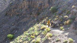 Iran, Wanderung