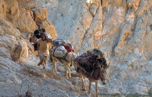 Oman: Eseltrekking Sharqiyah