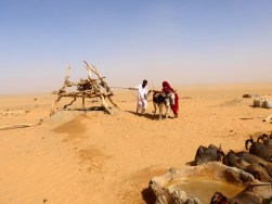 Sudan: Die Esel werden eingespannt