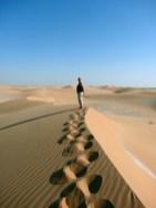 Oman: Auf den Dünen der Wahiba