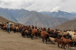 B_Tadschikistan_084