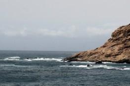 Meereswogen