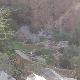 versteckte Terrassenfelder im Hajjar Gebirge
