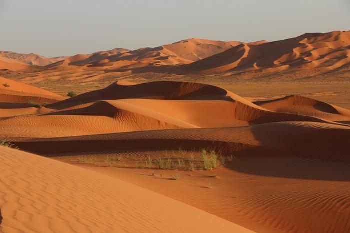 Dünenlandschaft in der Rub al Khali