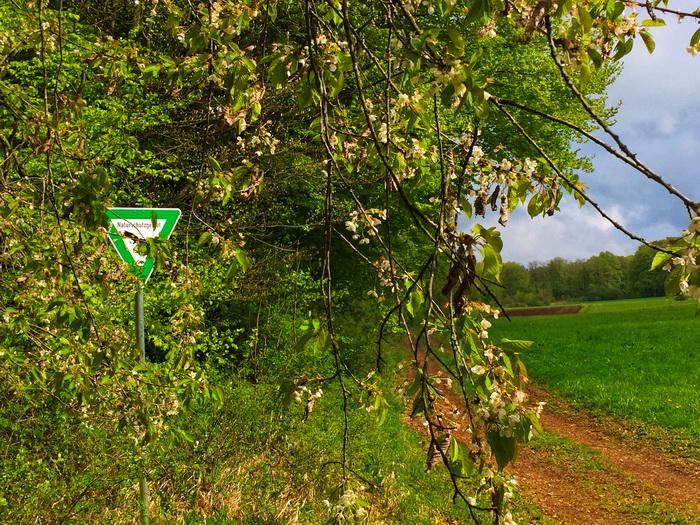 Schönecker Schweiz Naturschutzgebiet