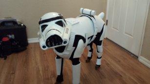 Stormtrooper Kostüm