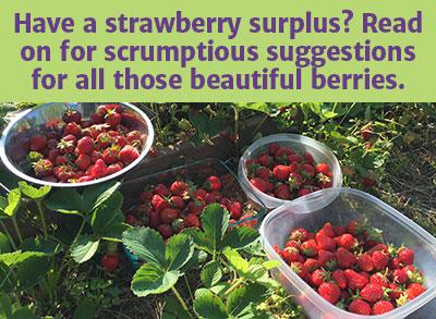organic_strawberry_recipes