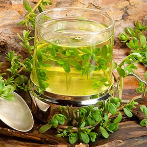 Herbal Healing Tea From Brahmi