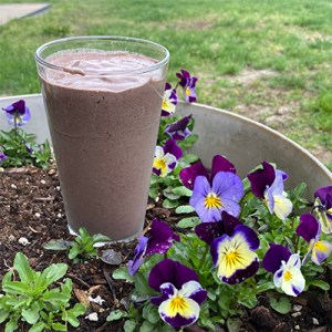 image of the Breakfast Fruit Smoothie —a great addition to drinking one meal a day
