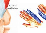 Ωλένια Νευρίτιδα: συμπτώματα και θεραπεία