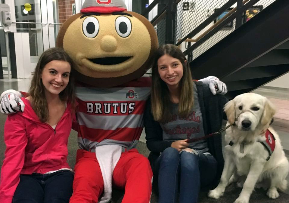 Animal-assisted therapy with The Ohio State University's (OSU) Aphasia Initiative.