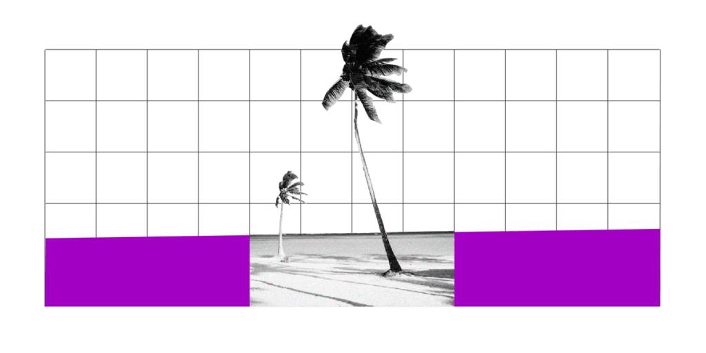 Ilustração de uma praia com dois coqueiros e retângulos roxos ao lado.