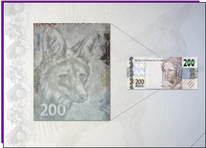 Detalhe da nota de 200 reais que mostra a marca d'água do lobo-guará