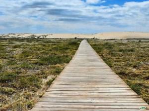 Parque Natural de las Dunas de Corrubedo (Santa Uxía de Ribeira)